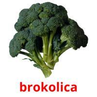 brokolica picture flashcards