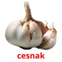 cesnak picture flashcards