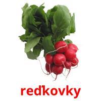 reďkovky picture flashcards