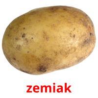 zemiak picture flashcards