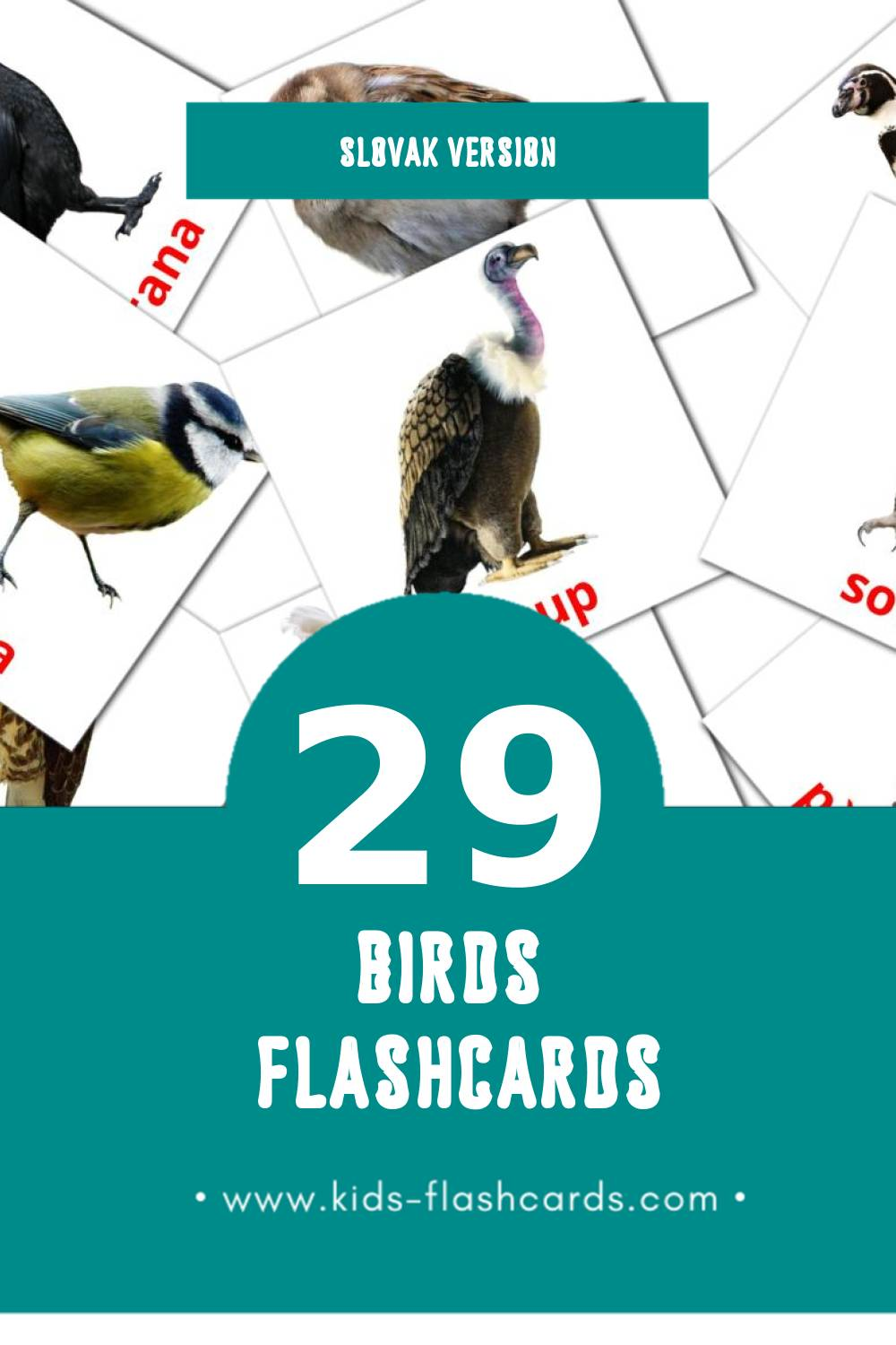 Visual Vtáky Flashcards for Toddlers (28 cards in Slovak)