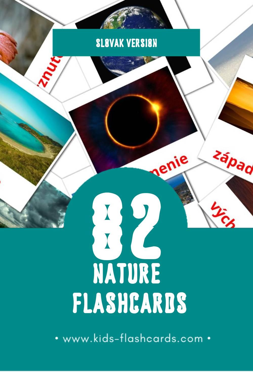 Visual Príroda Flashcards for Toddlers (51 cards in Slovak)