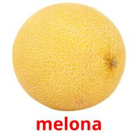 melona picture flashcards