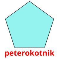 peterokotnik picture flashcards