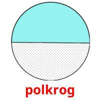 polkrog picture flashcards