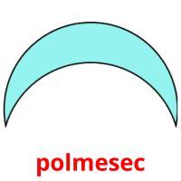 polmesec picture flashcards