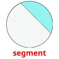 segment picture flashcards