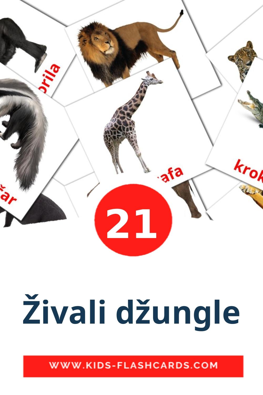 21 Živali džungle Picture Cards for Kindergarden in slovenian