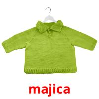 majica picture flashcards
