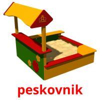peskovnik picture flashcards