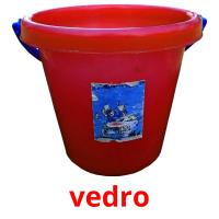 vedro picture flashcards