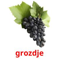 grozdje picture flashcards