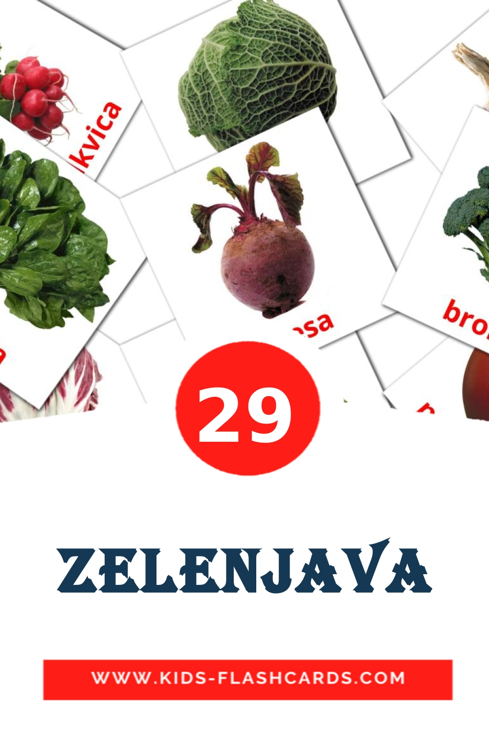 29 Zelenjava Picture Cards for Kindergarden in slovenian