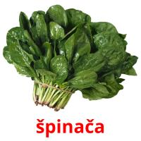 špinača picture flashcards