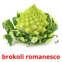 brokoli romanesco picture flashcards