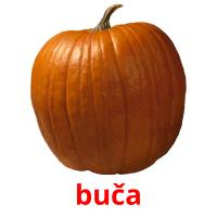 buča picture flashcards