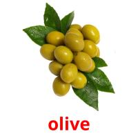 olive picture flashcards