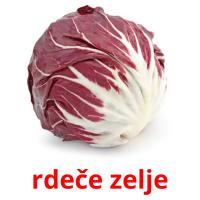 rdeče zelje picture flashcards