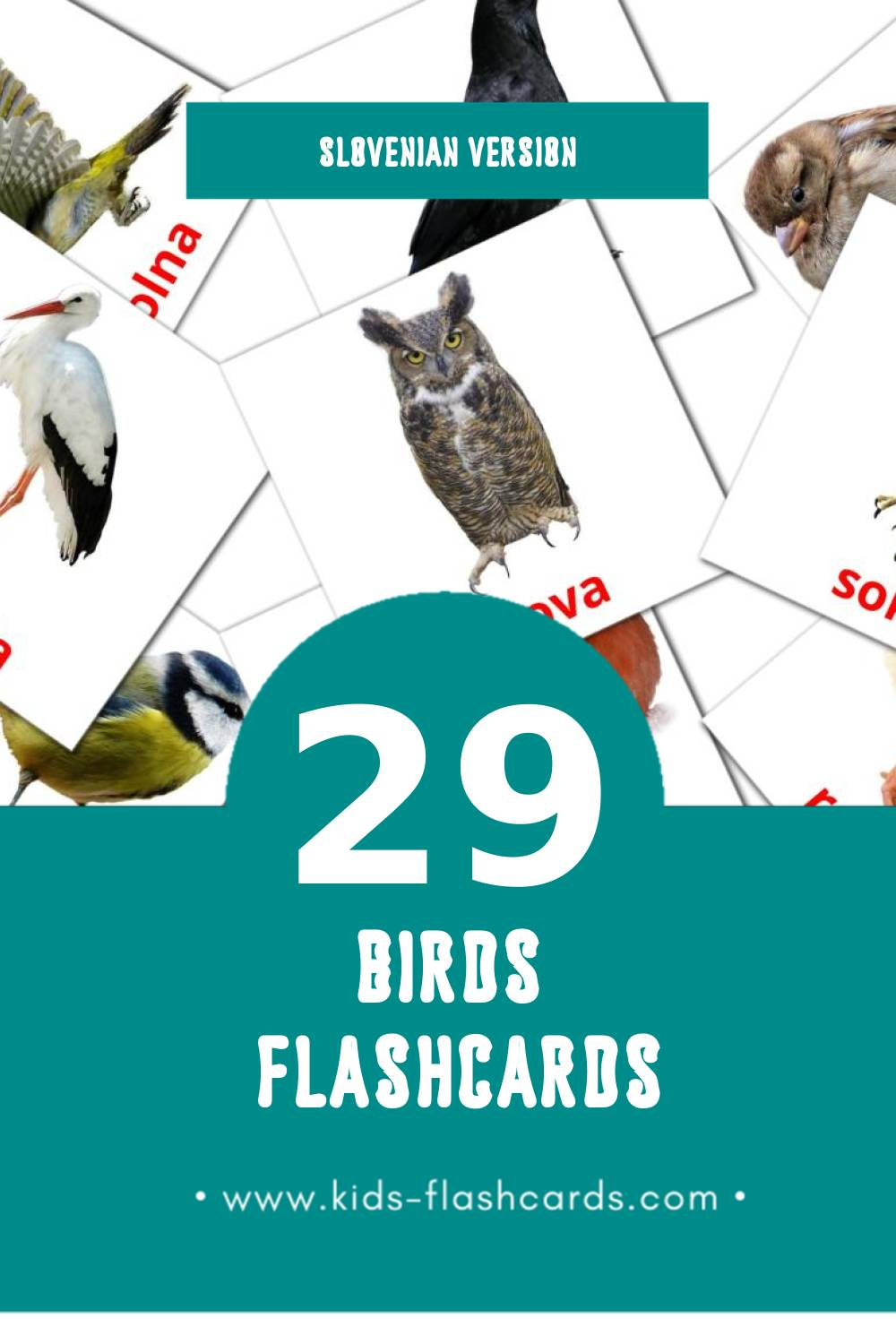 Visual Ptice Flashcards for Toddlers (29 cards in Slovenian)