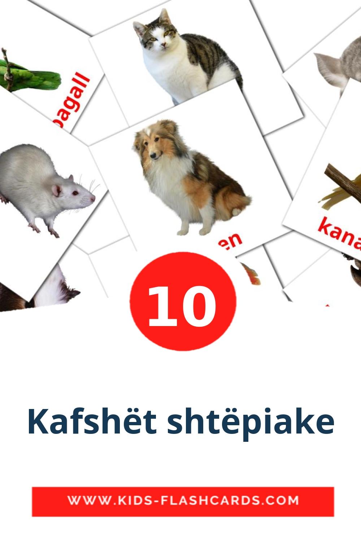 10 Kafshët shtëpiake Picture Cards for Kindergarden in albanian