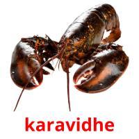 karavidhe picture flashcards