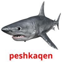 peshkaqen picture flashcards