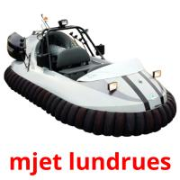 mjet lundrues picture flashcards