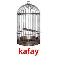 kafay picture flashcards