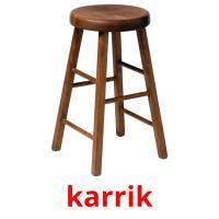 karrik picture flashcards