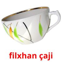 filxhan çaji picture flashcards