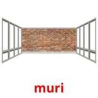 muri picture flashcards