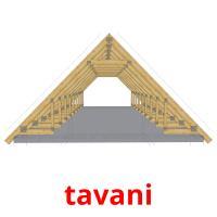 tavani picture flashcards