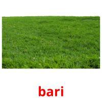 bari picture flashcards