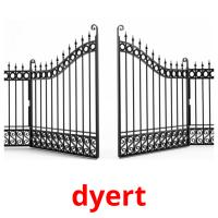 dyert picture flashcards