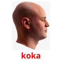 koka picture flashcards