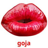 goja picture flashcards