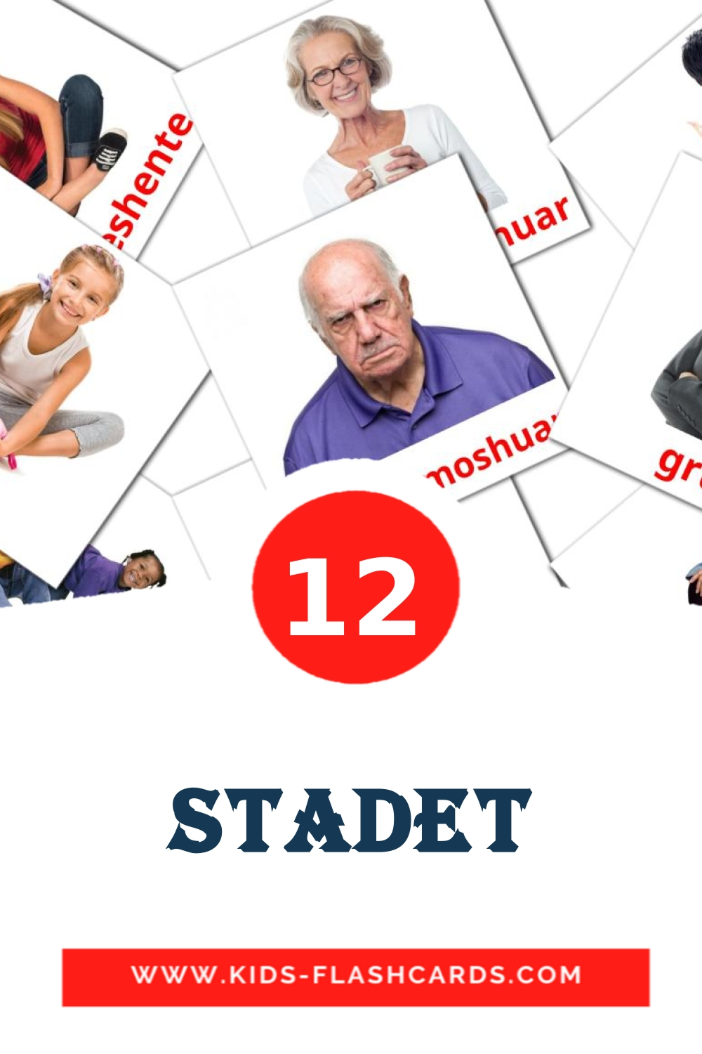12 Stadet Picture Cards for Kindergarden in albanian