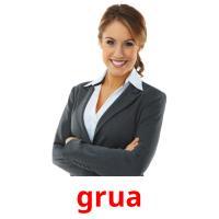 grua picture flashcards