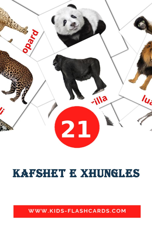 21 Kafshet e xhungles Picture Cards for Kindergarden in albanian