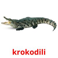 krokodili picture flashcards