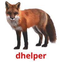dhelper picture flashcards