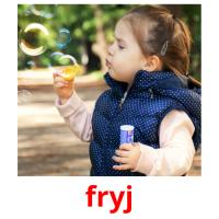 fryj picture flashcards