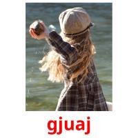 gjuaj picture flashcards