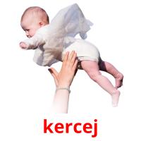 kercej picture flashcards
