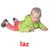 laz picture flashcards