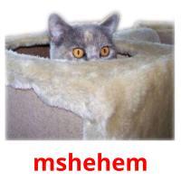 mshehem picture flashcards