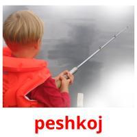 peshkoj picture flashcards