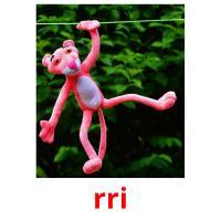 rri picture flashcards