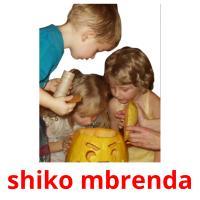 shiko mbrenda picture flashcards
