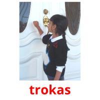 trokas picture flashcards